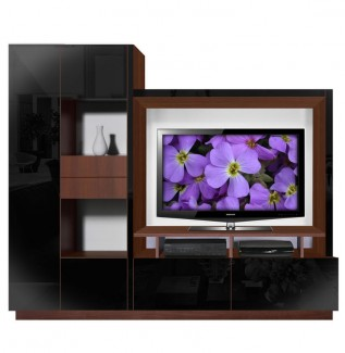 Black Scarlett Wall Unit