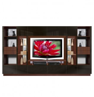 Victor Wall Unit Black Glass