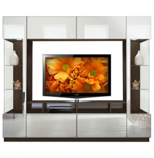 Mirrored Curio Entertainment Center