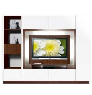 Bingham Wall Unit White Glossy with Mounting Panel